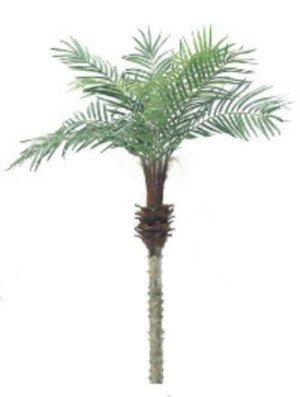 ヤシの木「フェニックスパームツリー」人工観葉植物 全長150cm B01G81F41E