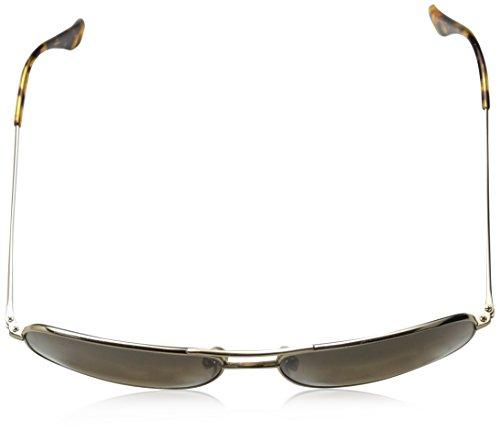Bronze Frame Sunglasses Polarized hcl Jim Wiki Maui Gold Lens RxP0wF7