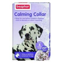 BEAPHAR UK Beaphar Beruhigendes Halsband für Hunde sgl Packung 1