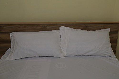 Rajlinen Luxury Egyptian Cotton 300-Thread-Count Sateen Finish 2 Qty Pillow Case Standard Size 20