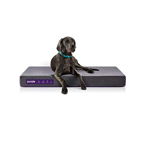 Purple Animal Bed for Dogs and Cats and Breeds, Antimicrobial Pet Bed, High-Tech Pillow Pad for Pet Comfort -