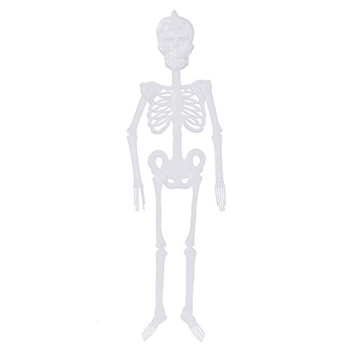 Taloyer Halloween Poseable Human Skeleton Luminous Scary Hanging Skull for Holiday Party Decro Props (S) -