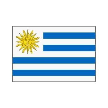 Amazoncom Uruguay Ft X Ft Printed Polyester Flag Garden - Uruguay flag