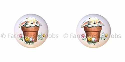 SET OF 2 KNOBS - Potted Bunny Rabbit Tulips - Rabbits - DECORATIVE Glossy CERAMIC Cupboard Cabinet PULLS Dresser Drawer KNOBS