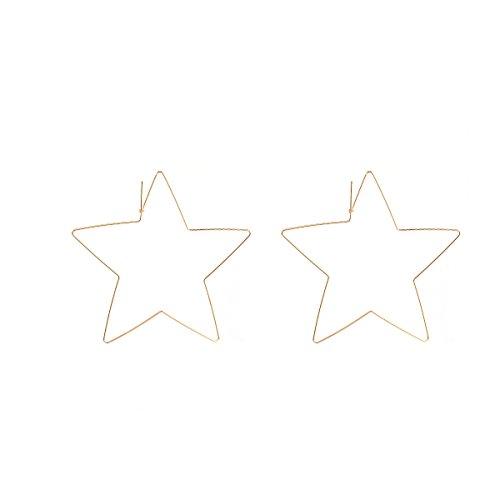 2017 New Tassel Earrings Dangle Long Earrings For Girls Womens (Big Star)