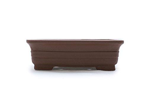Bonsai Tree Pot 6 Inch or 12 Inch Unglazed Rectangle shape