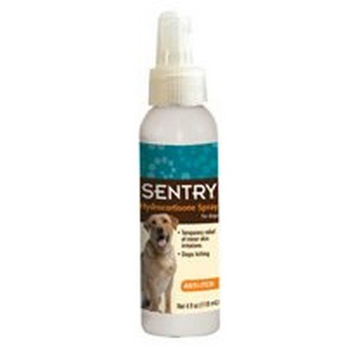 Best Anti Itch Spray For Cats