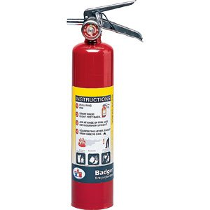 Fire Extinguisher, Plated Brass, 2.5lb.