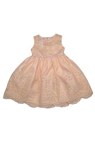 Baby Girls Champagne Scalloped Hem Embroidered Flower Girl Stylish Dress 24M