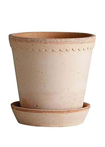 "Floral Home Handmade Terra Cotta Clay Helena Pot & Saucer in Antique Pink - 6.3"" Wide"