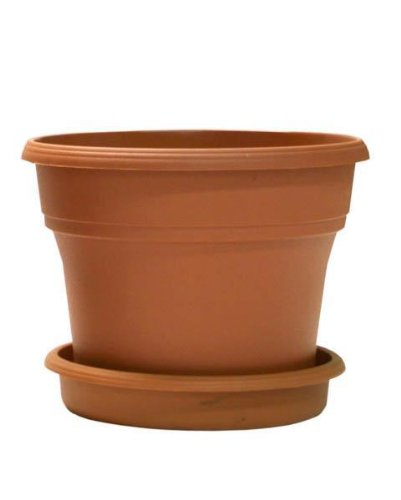 Terracycle Recycled Plastic Pot & Saucer 10