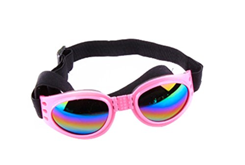 Freerun Dog Goggles Pet Sunglasses Eye Wear UV Protection Waterproof Sunglasses for Dogs - - Do Wear Sunglasses Size What I