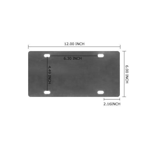 License-Plate-Cover-Decorative- diamension