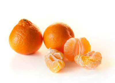 Owari Satsuma Tree - up to 4 ft. tall trees - pick satsuma citrus the first year! by Brighter Blooms