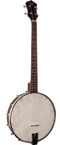 Recording King RKT-05 Dirty Thirties Tenor Banjo by Recording King