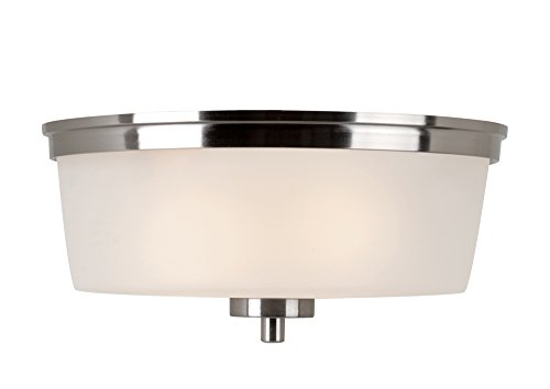 Transglobe Lighting 70335 BN Flush Mount with Frosted Glass