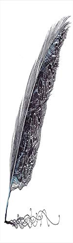Price comparison product image Feather House Decor 3D Decorative Film Privacy Window Film No Glue, Frosted Film Decorative, Image of a Dated Classic Quill Pen Feather with Leaf Motifs on One Side, for Home&Office, 17.7x59Inch Grey