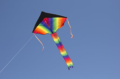 Large Delta Kite / Rainbow Kite (200' of Line) - Easy to Assemble, Launch, Fly - Premium Quality, One of the Best Kites for Kids / Kites for Adults - Great Beginner Kite