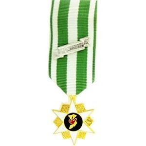 Military Vietnam Campaign Medal - Mini