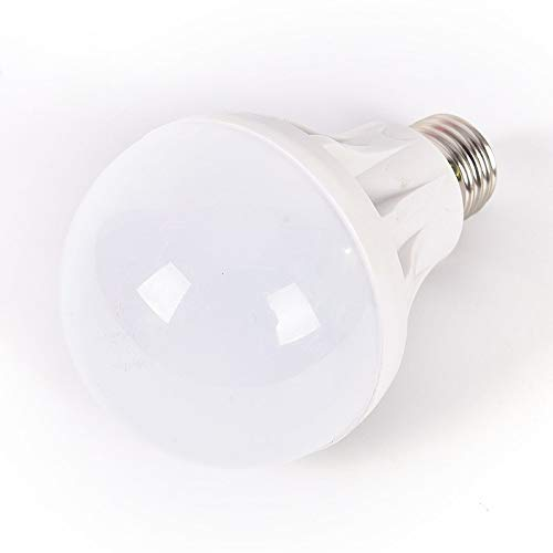 Bayonet Led Rechargeable Light in US - 9
