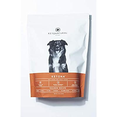 Ketona Salmon Recipe Dry Food for Adult Dogs - Low Carb, High-Protein, Grain-Free Dog Foods (4.2 lb)