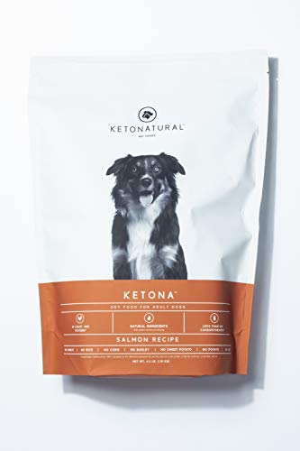 Ketona Salmon Recipe Dry Food for Adult Dogs - Low Carb, High-Protein, Grain-Free Dog Foods (4.2 lb) (Best Low Cost Dry Dog Food)
