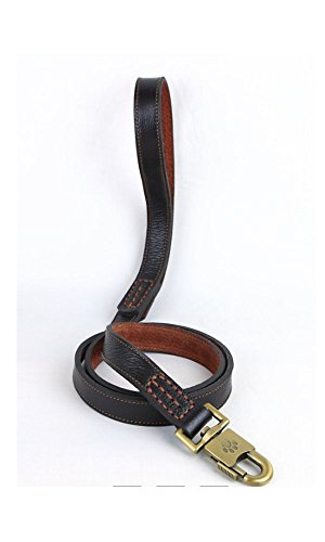 Strimm 120cm Quality Soft Genuine Real Braided Classic Leather Pet Dog Leash for Training Walking Show with Quick Easy Metal Clip- Large Size Breed Dog, Brown