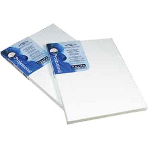 Winsor Newton 11-Inch by 14-Inch Universal Stretched Canvas, 2-Pack