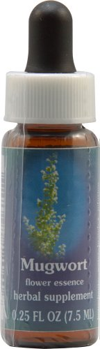 Flower Essence Services Quintessentials Supplement Dropper, Mugwort, 0.25 Fluid ()