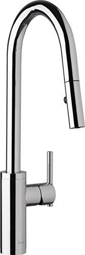 (Danze D454058 Modern Parma Cafe Pull-Down Kitchen Faucet with Snapback Retraction, Chrome)