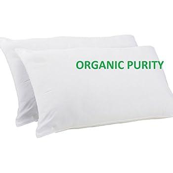 Amazon Com Bean Products Standard Size Organic Kapok