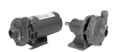 Goulds 22BF2C1L9 Centrifugal Pump
