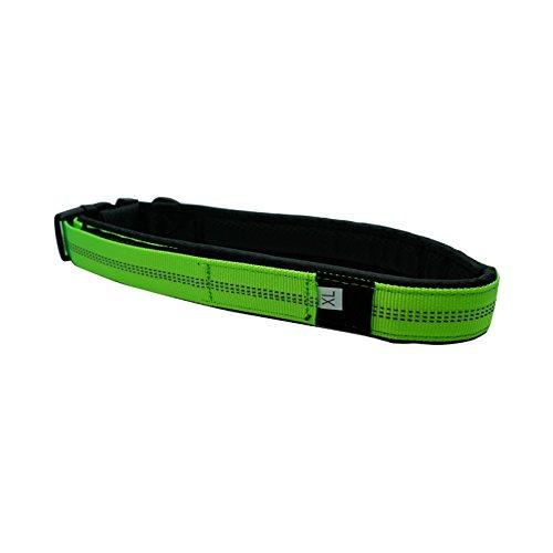 Green XL Green XL VSHEN Pet Collar and Leash (XL, Green)