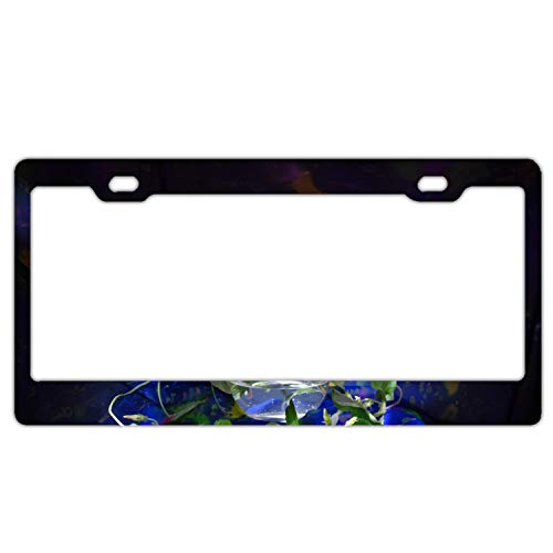- Sbfhdy Product Express Personalized Asters Flowers Vase EEL White Light License Plate Frame Metal Gills