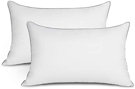EDOW Soft Pillows for Sleeping (2 Pack)Supportive Down Alternative Polyester Micro-Fiber Filled Pillows Brushed Cotton Cover Machine Washable (White Queen(20x30))