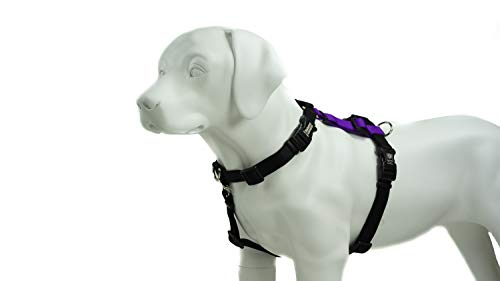 Blue-9 Pet Products Balance Harness Buckle Neck (Medium, Purple) from Blue-9 Pet Products