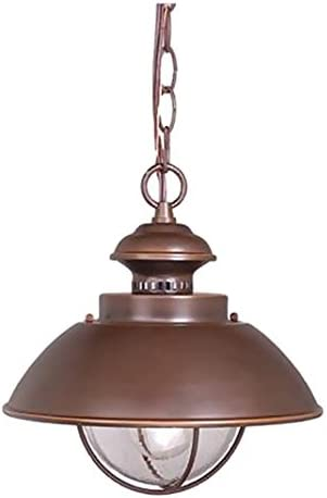 Vaxcel OD21506BBZ Harwich 10-Inch Outdoor Pendant, Burnished Bronze