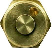Champion Nozzle (Champion Irrigation S3q Sprinkle Insert Nozzle 3 Quarter - Brass)