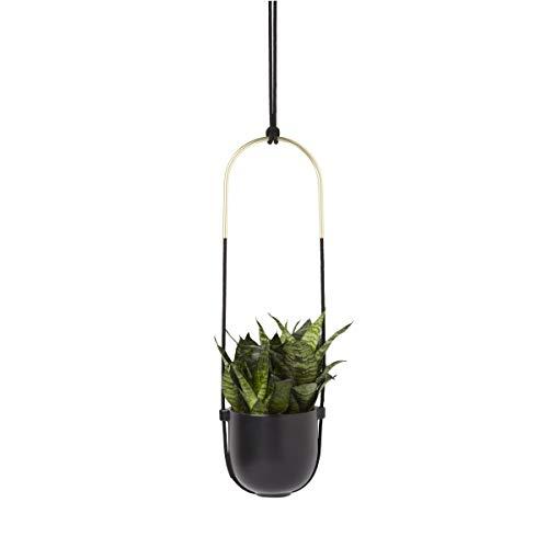 Umbra-Bolo-Hanging-Planter