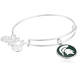 Alex and Ani Color Infusion Michigan State University Logo II Bangle