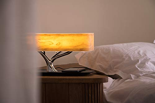Tree of Light - Bedside Table Lamp with Built-in Bluetooth Speaker and Wireless Charger for Bedroom, Office, Living Room, Stepless Dimming Desk Lamp with Sleep Mode - Elegant Bedside Lamp with Modern Technology - 3 in 1 Stunning Lamp with Built-in Bluetooth Speaker and Wireless Charger for Bedroom, Office, Living Room. Unique and Stunning Design - Built-In powerful Bluetooth speaker delivering Omni-Directional sound featuring preeminent performance from our dual wave-guide technology. LED Dimming Light with Touch Control - Switch the Light ON /OFF with a light touch. Press and hold the touch area for 3 seconds for Sleep Mode and light will turn off within 30 mins. - lamps, bedroom-decor, bedroom - 31Fyk6UjX5L -