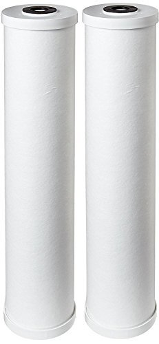 "Pentek RFC20-BB Carbon Filter Cartridge, 20"" x 4-1/2"" (Knapsack of 2)"