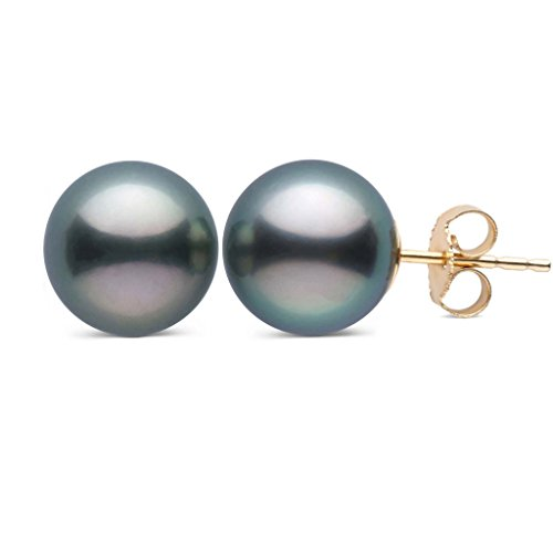 8.0-9.0 mm AAA Tahitian Cultured Pearl Stud Earrings 14K Yellow Gold ()