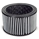 P05051A, Champion Air Intake Filter