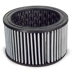 P05051A, Champion Air Intake Filter
