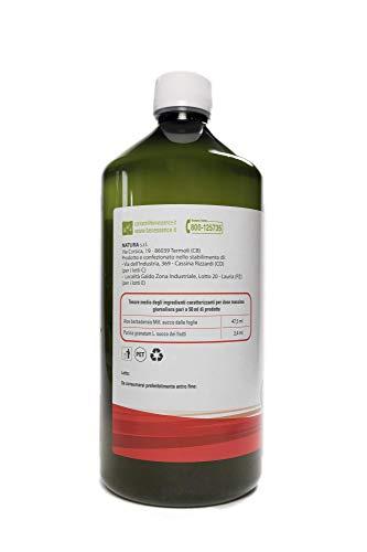 Succo di Aloe Vera e Melograno - 3L 7