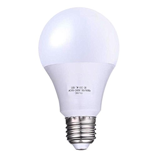 Led Light Bulb Education - 9