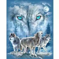 DIY 5D Diamond Painting, YUYOUG Partial Drill Crystal Rhinestone Embroidery Pictures Cross Stitch Arts Craft for Home Wall Decors Wolf Spirit-25x30cm