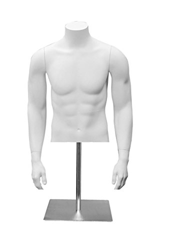 Male Fiberglass Half Torso Form Retail Store Display Clothes Fixture White NEW by Unknown
