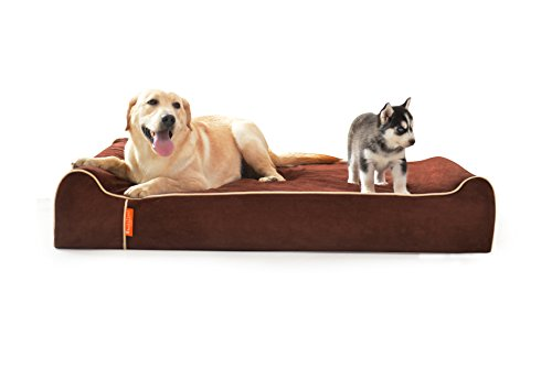 LaiFug Orthopedic Memory Foam Extra Large Dog Bed Pillow(50''x36''x8'', chocolate) Durable Waterproof Liner,Removable Washable Cover by Laifug